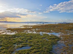 Lake-in-Cabilao-Island-Bohol-Philippines